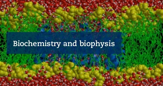 Biochemistry and biophysics